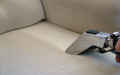 sofa cleaning dallas